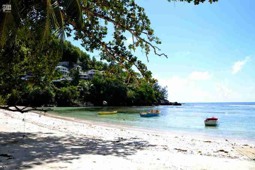 Seychellen_Mahé_cg (291)_1_cw